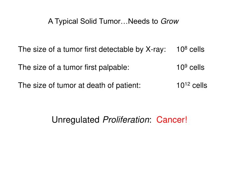A Typical Solid Tumor…Needs to
