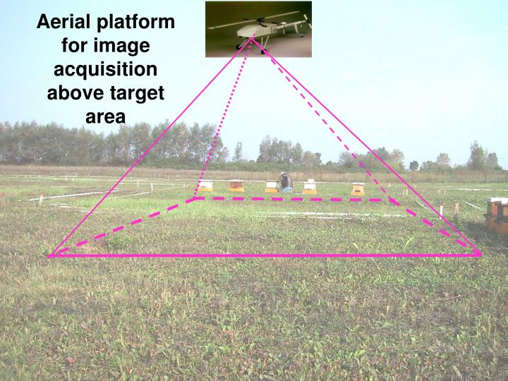 Aerial platform for image acquisition above target area