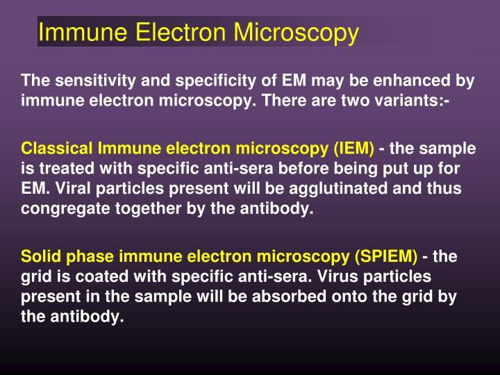 Immune Electron Microscopy