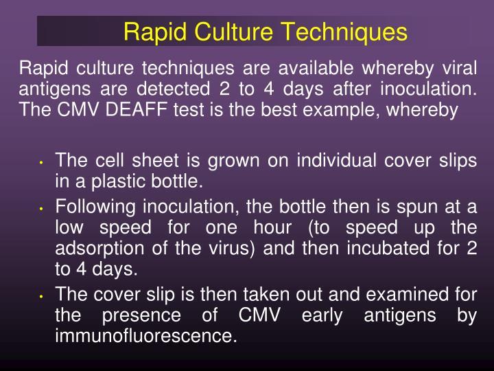 Rapid Culture Techniques