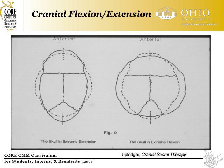 Cranial Flexion/Extension