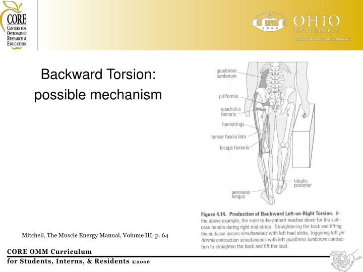 Backward Torsion: