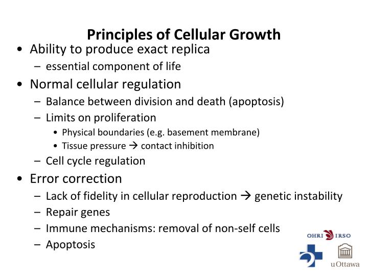 Principles of Cellular Growth