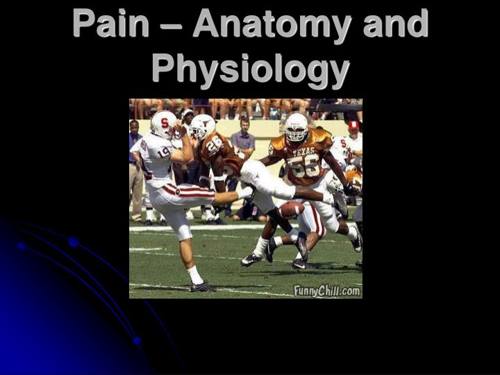 Pain – Anatomy and Physiology