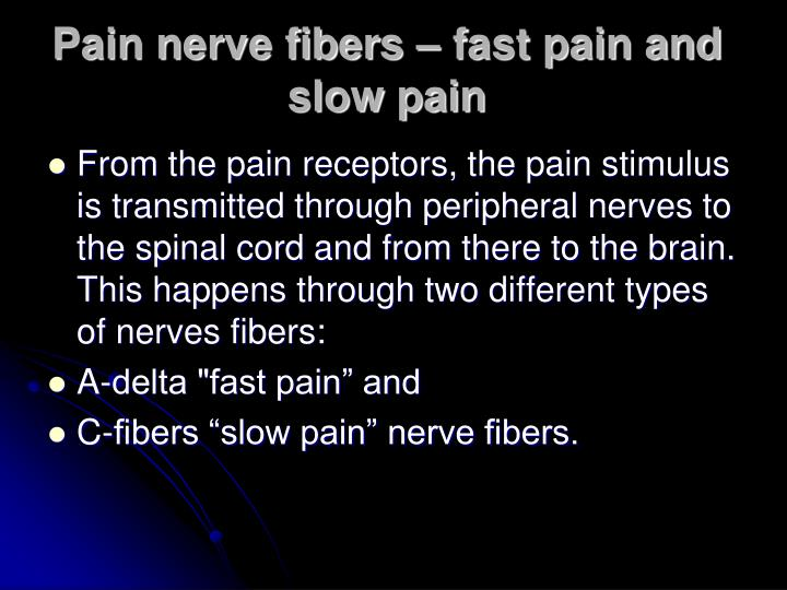 Pain nerve fibers – fast pain and slow pain