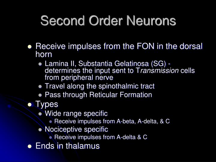 Second Order Neurons