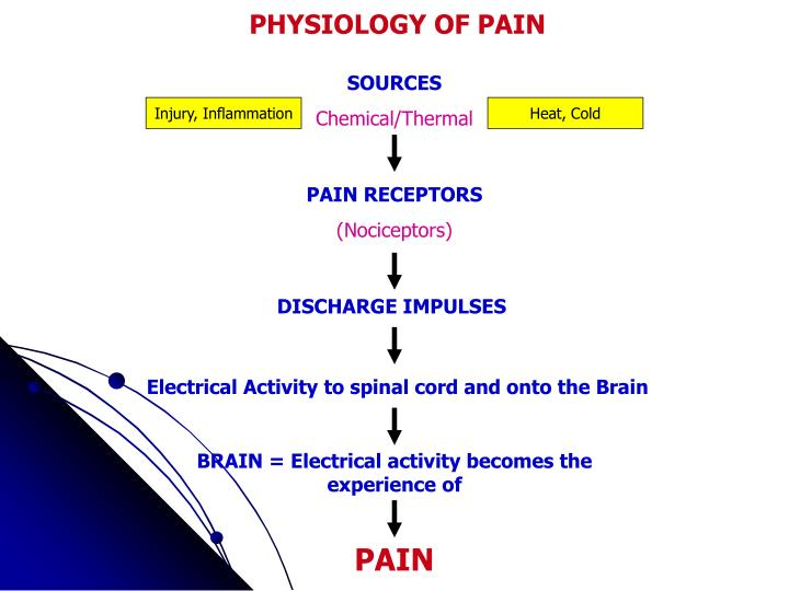 PHYSIOLOGY OF PAIN