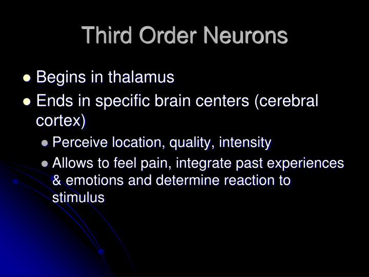 Third Order Neurons