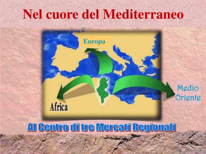 Nel cuore del Mediterraneo