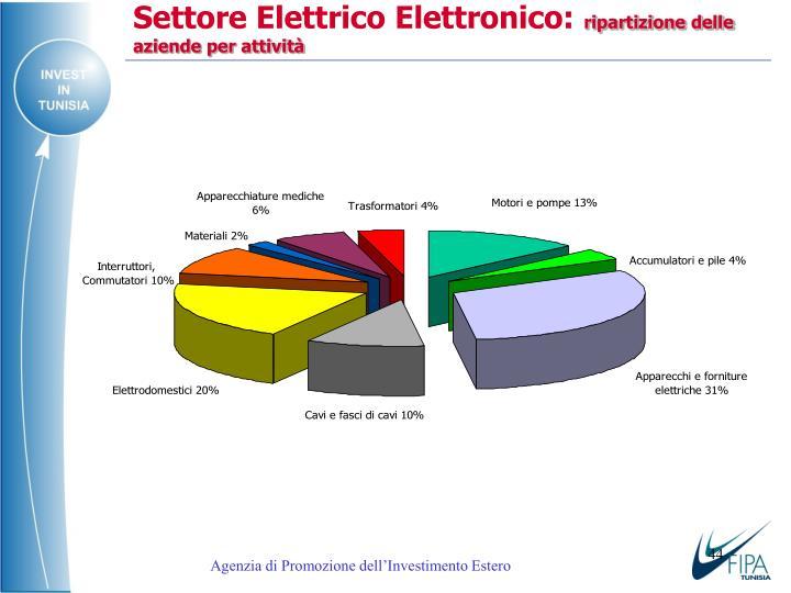 Settore Elettrico Elettronico: