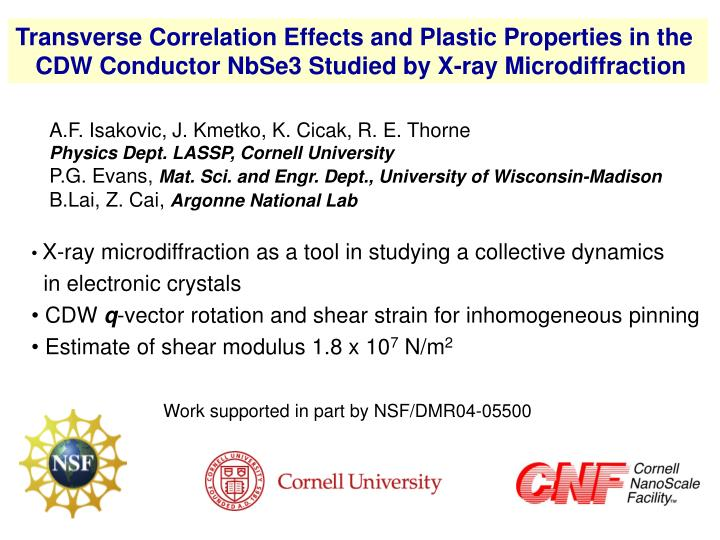 Transverse Correlation Effects and Plastic Properties in the