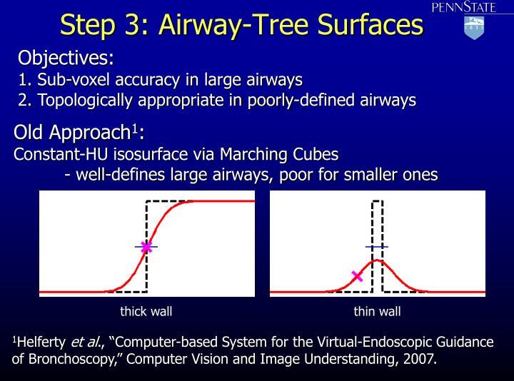 Step 3: Airway-Tree Surfaces