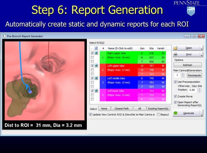 Step 6: Report Generation