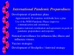 international pandemic preparedness