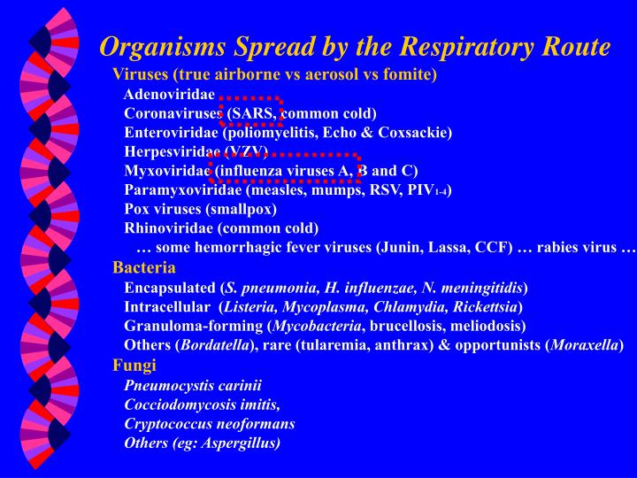 Organisms Spread by the Respiratory Route
