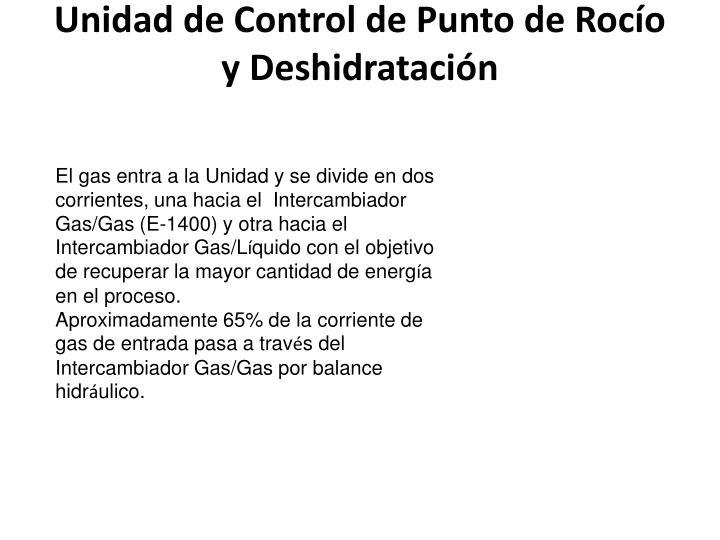 Unidad de Control de Punto de Rocío y Deshidratación
