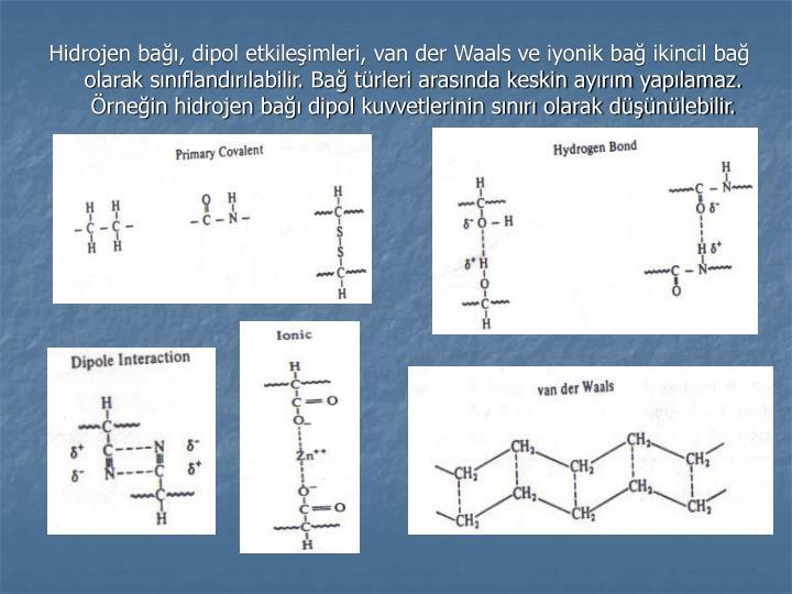 Hidrojen bağı, dipol etkileşimleri, van der Waals ve iyonik bağ ikincil bağ olarak sınıflandırılabilir. Bağ türleri arasında keskin ayırım yapılamaz. Örneğin hidrojen bağı dipol kuvvetlerinin sınırı olarak düşünülebilir.