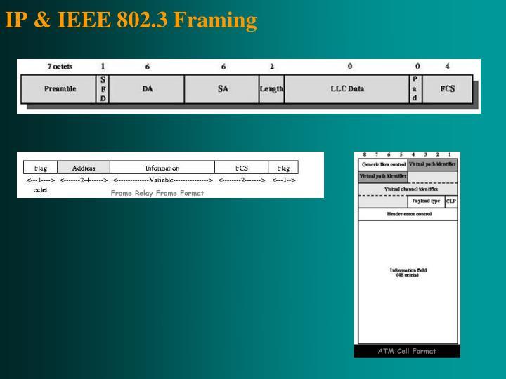 Frame Relay Frame Format