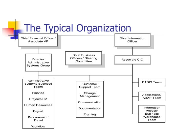 The Typical Organization