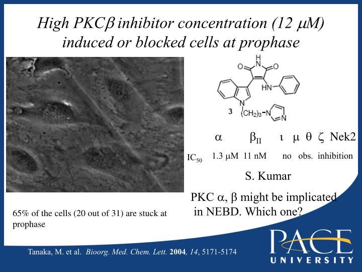 High PKC