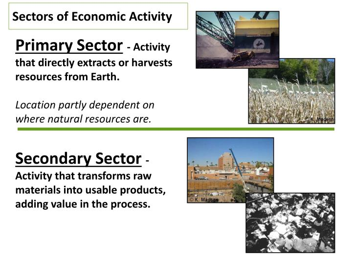 Sectors of Economic Activity