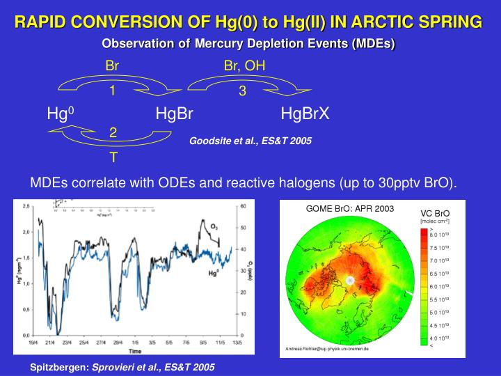 RAPID CONVERSION OF Hg(0) to Hg(II) IN ARCTIC SPRING