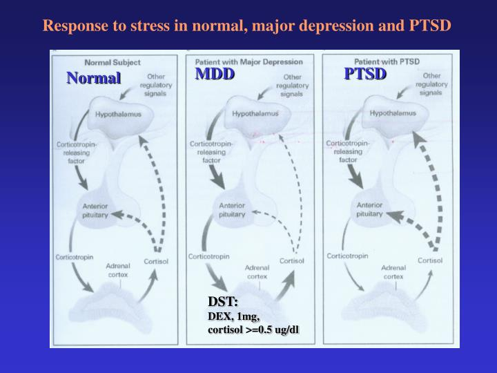 Response to stress in normal, major depression and PTSD
