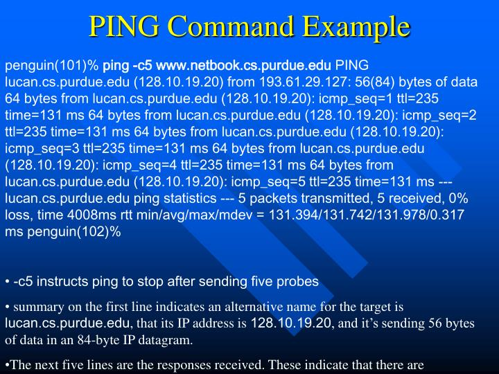 PING Command Example