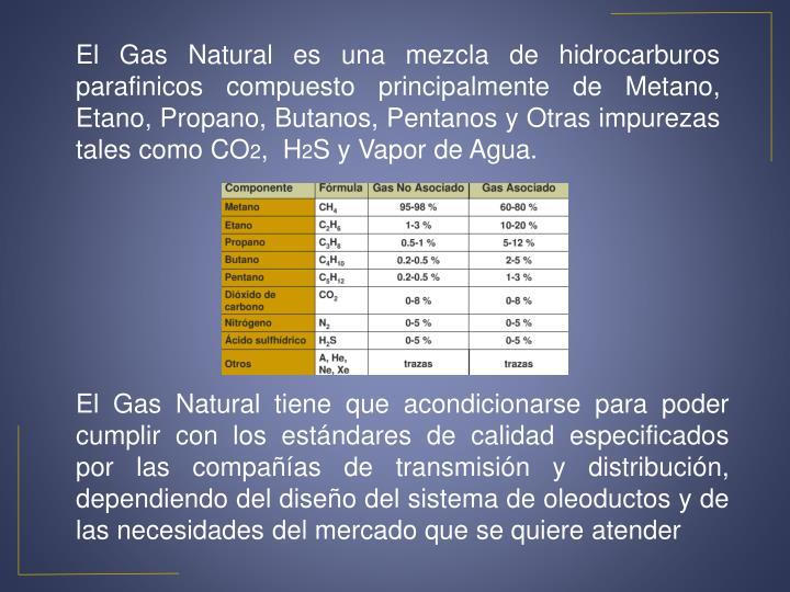 El Gas Natural es una mezcla de hidrocarburos parafinicos compuesto principalmente de Metano, Etano, Propano, Butanos, Pentanos y Otras impurezas tales como CO