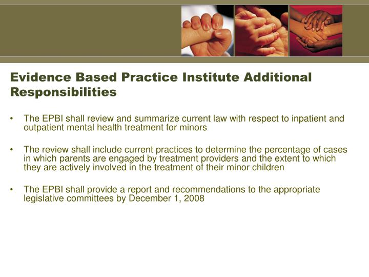Evidence Based Practice Institute Additional Responsibilities