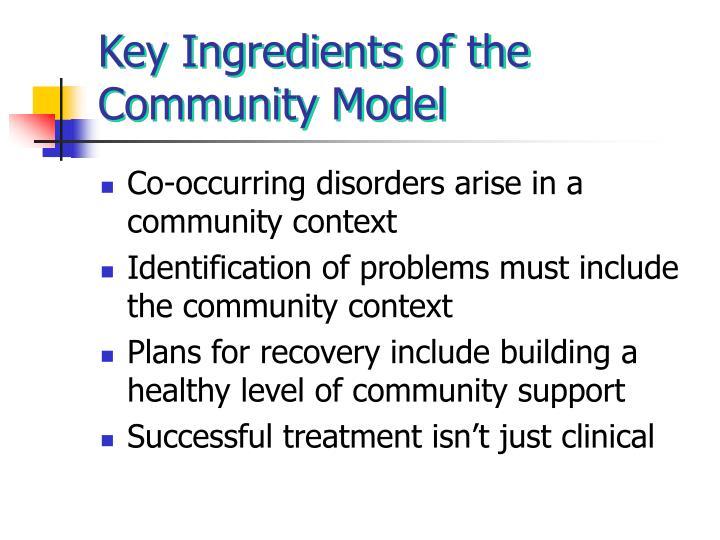 Key Ingredients of the Community Model