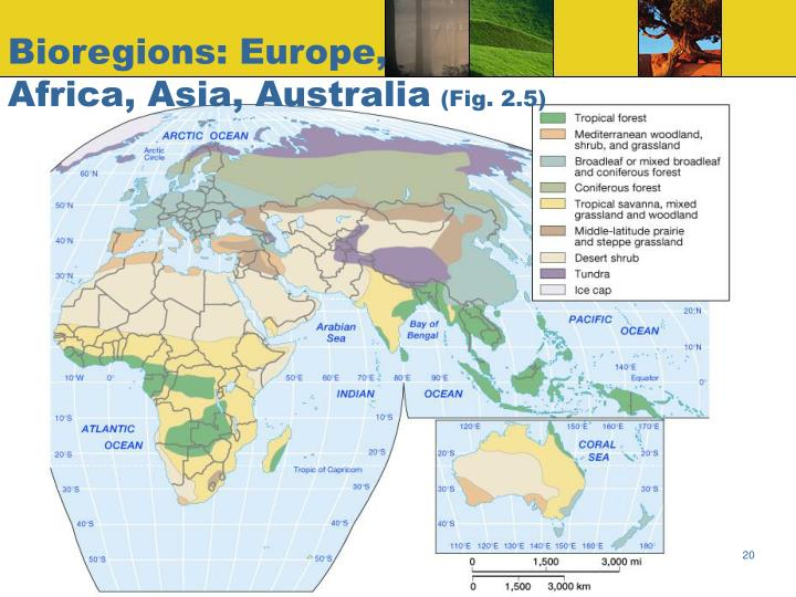 Bioregions: Europe,
