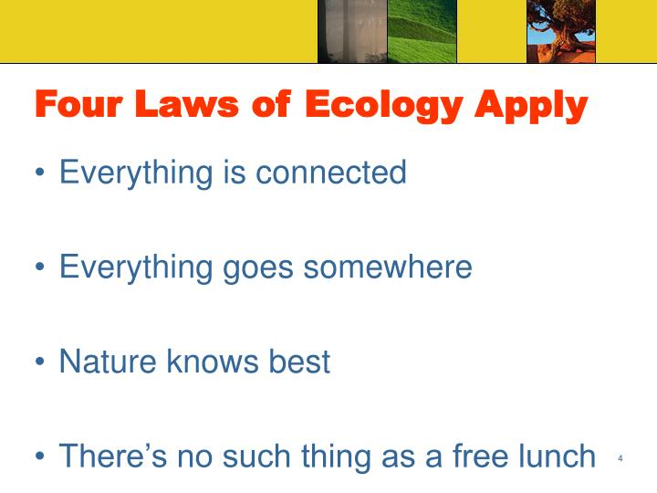Four Laws of Ecology Apply
