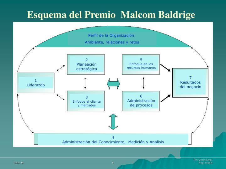 Perfil de la Organización: