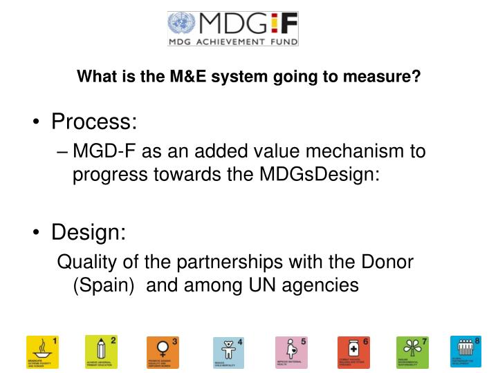 What is the M&E system going to measure?