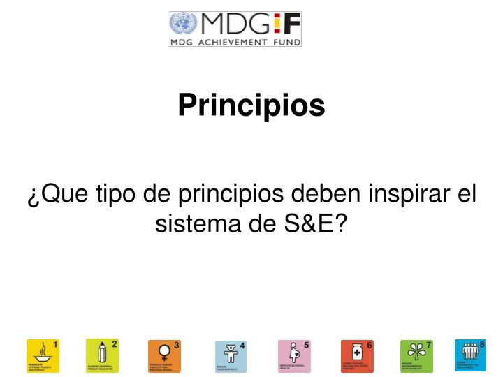 ¿Que tipo de principios deben inspirar el sistema de S&E?