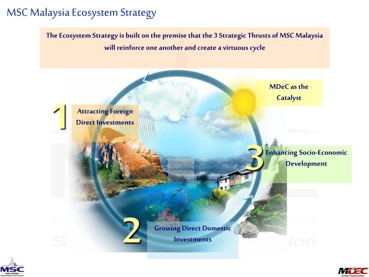 MSC Malaysia Ecosystem Strategy