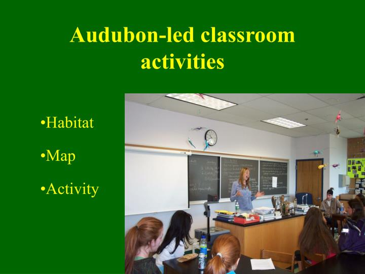 Audubon-led classroom activities