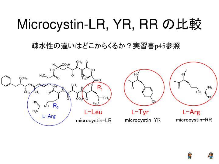 Microcystin-LR, YR, RR