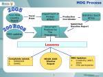 mdg process