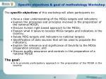 specific objectives goal of methodology workshop