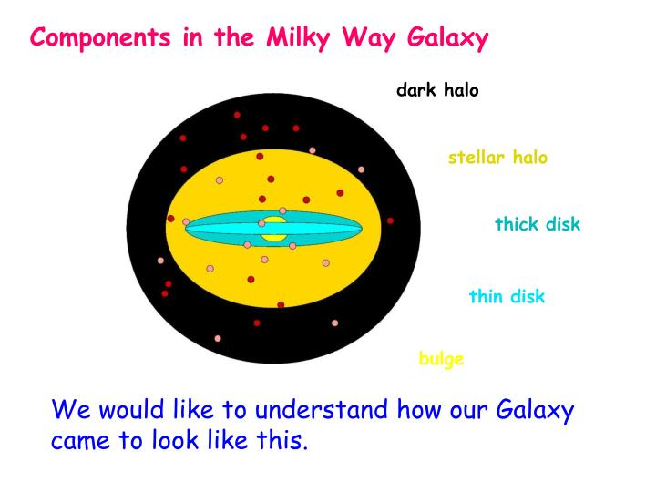 Components in the Milky Way Galaxy