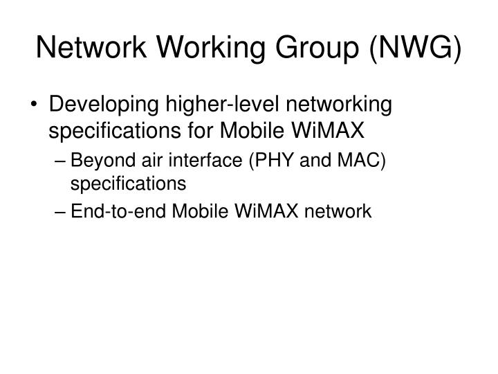 Network Working Group (NWG)