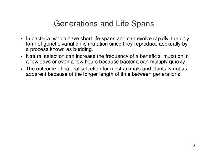 Generations and Life Spans