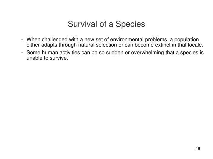 Survival of a Species