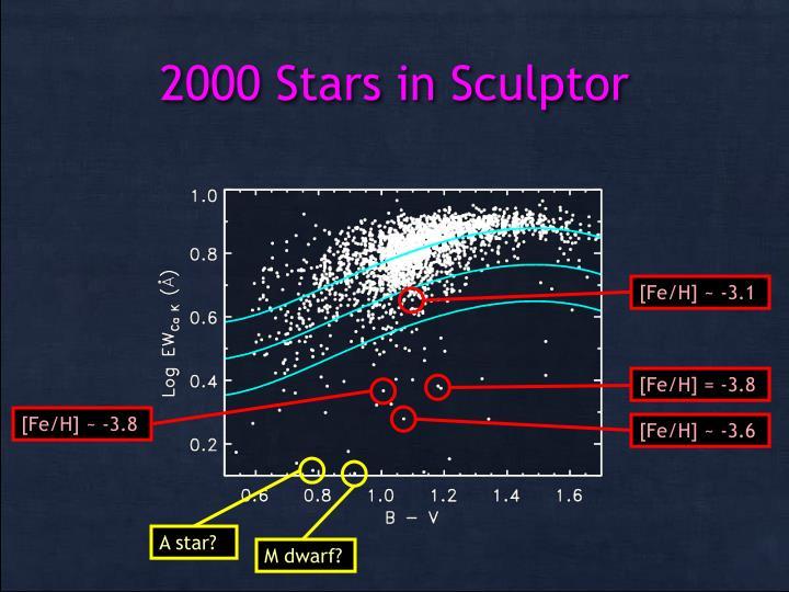 2000 Stars in Sculptor