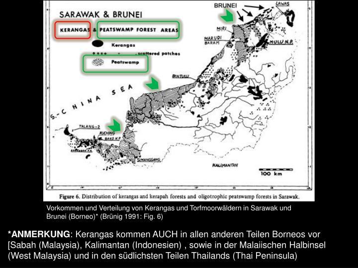 Vorkommen und Verteilung von Kerangas und Torfmoorwäldern in Sarawak und Brunei (Borneo)* (Brünig 1991: Fig. 6)