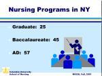 nursing programs in ny