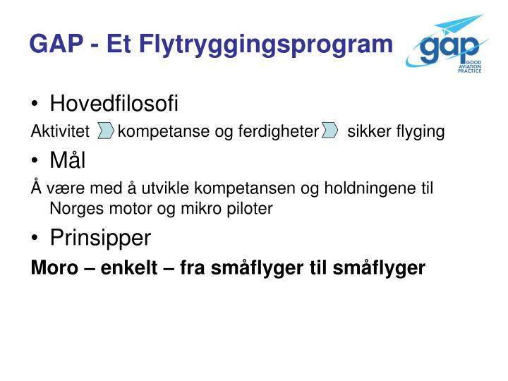 GAP - Et Flytryggingsprogram