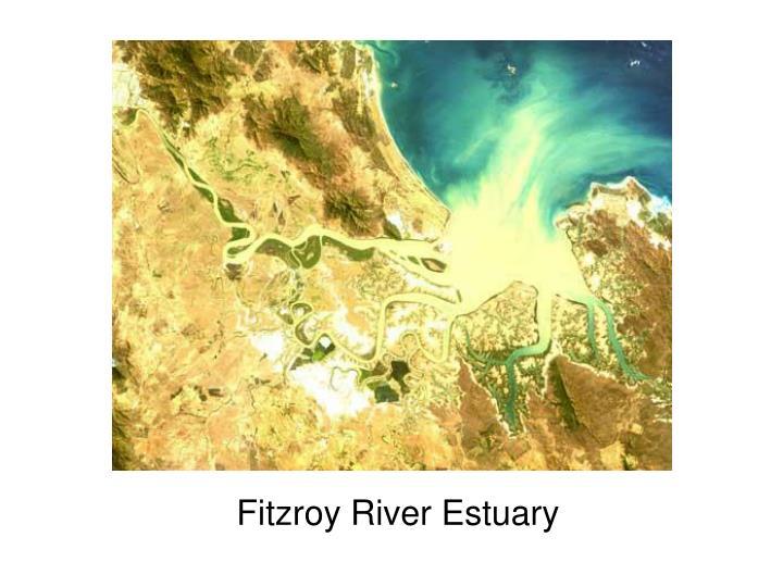 Fitzroy River Estuary